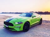 Photo Rent a 2020 Ford Mustang V8 GT in Dubai - AED...