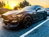 "Photo Sold! mustang ecoboost turbo ""performance package"""