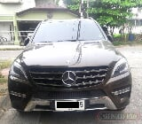 Photo 2014 Mercedes-Benz ML 250 CDI AMG